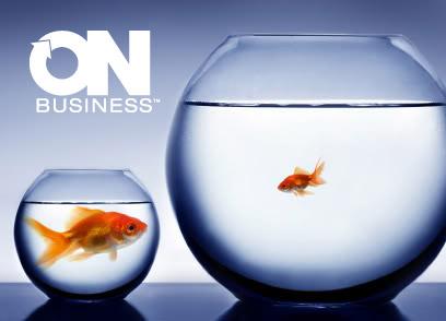 bigfishsmallpond.logo